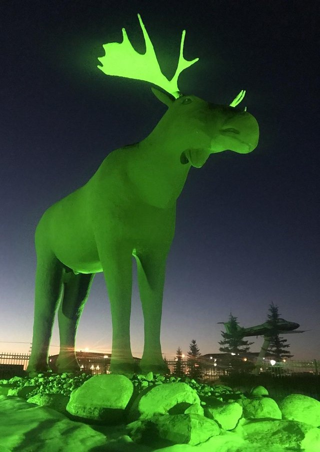 Tourism Ireland's annual Global Greening initiative to mark St Patrick's Day sees hundreds of iconic landmarks and sites around the world light up in green on  March 17, including, Mac the Moose in Saskatchewan, Canada.