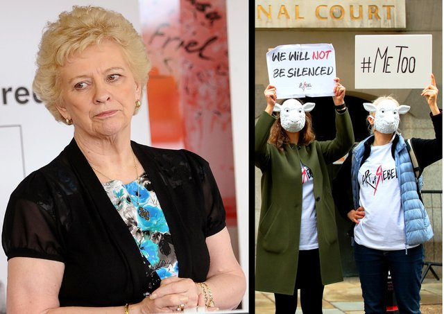 Left, Baroness O'Loan, Right, anti 'gendered violence' protestors this week in London
