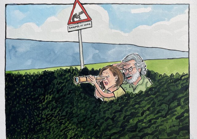 A satirical cartoon by Brian John Spencer, after SF this week denied 'data mining' Facebook accounts, but acknowledged suffering a data 'compliance gap'