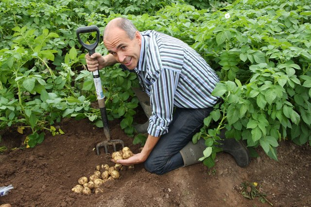 Angus Wilson, the founder and chairman of Wilson's Country Potatoesin Craigavon which has won a major award in Scotland