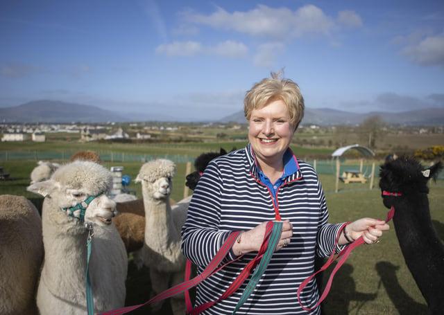 Pamela Houston with her herd of alpacas