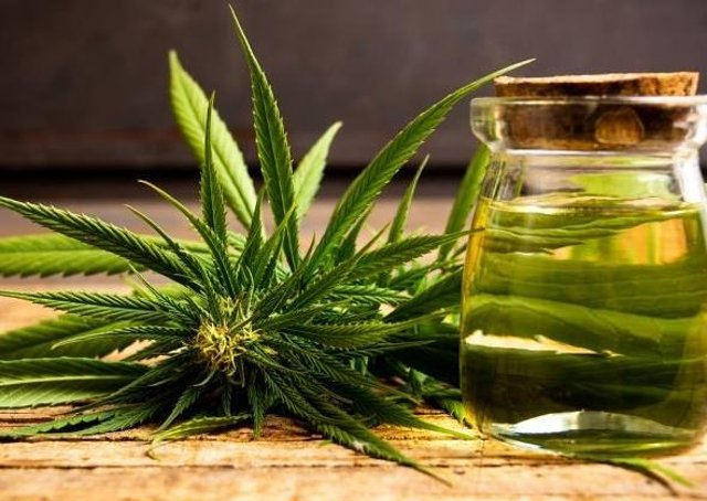The health benefits of the cannabis plant are manifold