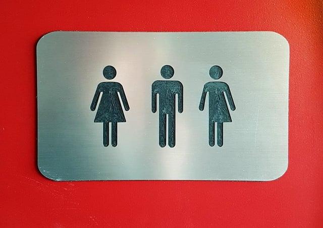 A transgender toilet sign; c/o IndridCold