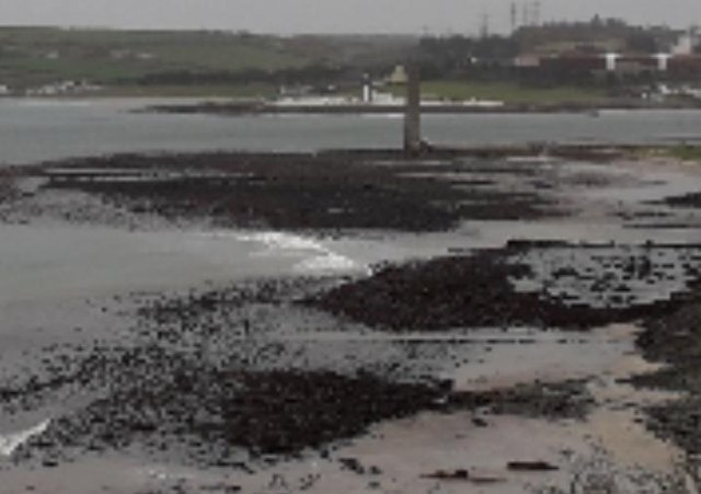 Sandy Bay, Larne