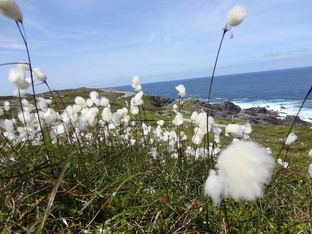 The Malin Head coastline of Co Donegal
