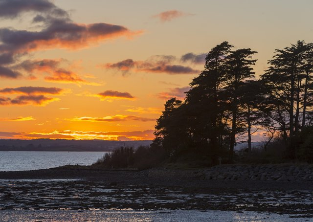 The sun sets on the shore of Strangford Lough, at Mount Stewart, County Down. The days are now getting shorter but in Northern Ireland the days are so long that it will be autumn before it begins to seem dark